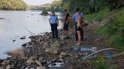 Un nou cadavru scos din Someș, în zona Micro 16