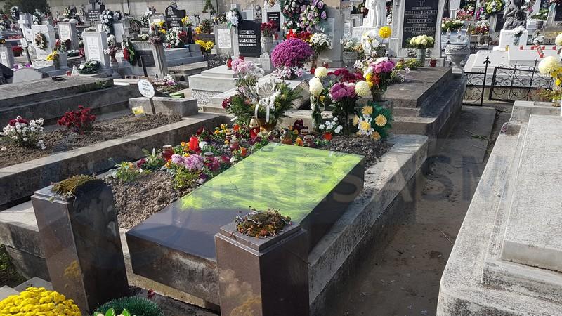 cimitir vandalizat Satu Mare