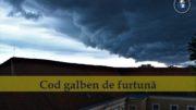 Cod galben de furtuna