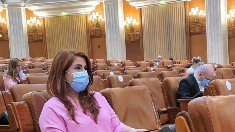 Pensii speciale vot Ioana Bran