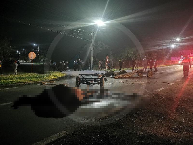 Cal spulberat de o mașină în Odoreu