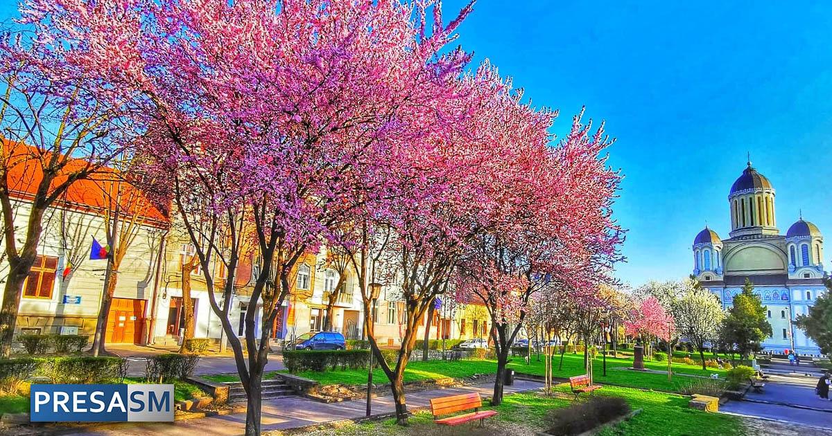 Primavara Satu Mare Parc Lucaciu
